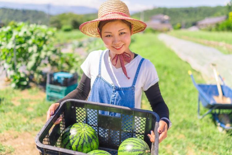 Top 7 ngành xuất khẩu lao động Nhật Bản nữ nên chọn năm 2020
