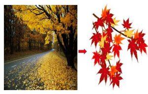 Học Tiếng Nhật Bài 35 | Giáo Trình Minna No Nihongo