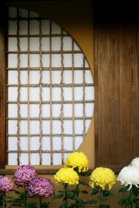Quốc hoa của Nhật Bản