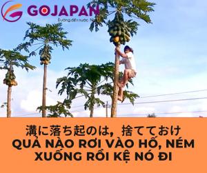 Truyện cười tiếng Nhật số 51 - QUẢ NÀO RƠI VÀO HỐ , NÉM XUỐNG RỒI KỆ NÓ ĐI (溝に落ち着のは、捨てておけ)