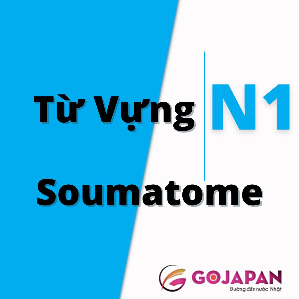Soumatome N1